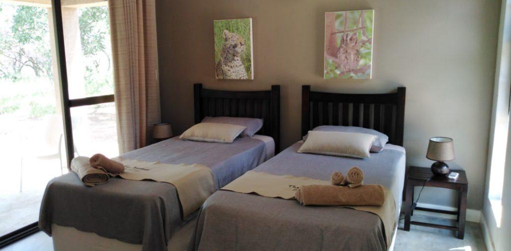 Zebra suite